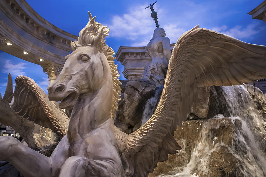 Winged Horse Photograph - Winged Horse by Glenn DiPaola