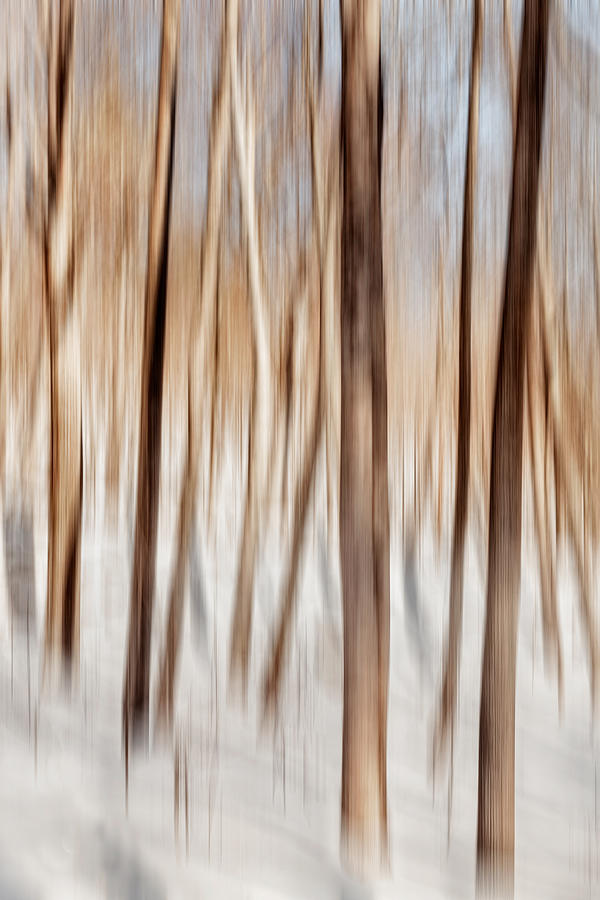 Winter Abstract Photograph