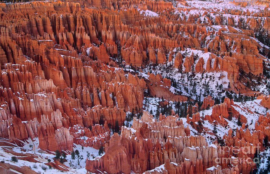 Winter Afternoon At Inspiration Point Bryce Canyon National Park ...