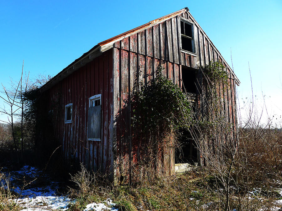 Barn Photograph - Winter Barn by Richard Reeve