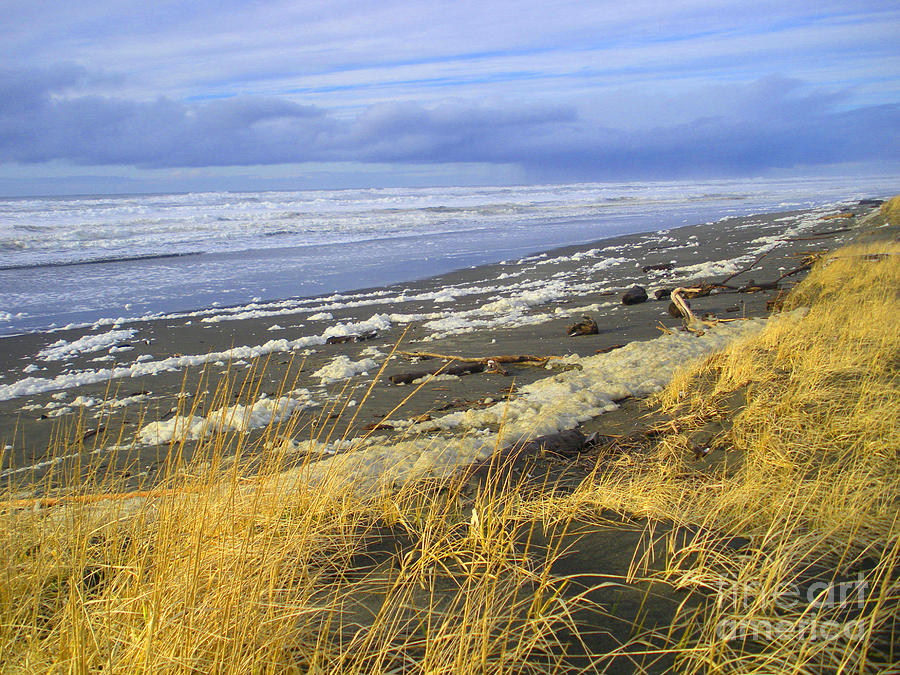 Winter Beach Photograph