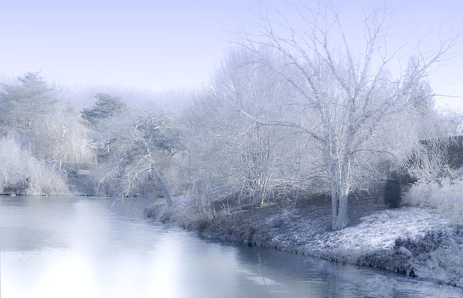 Winter Blue And White Photograph