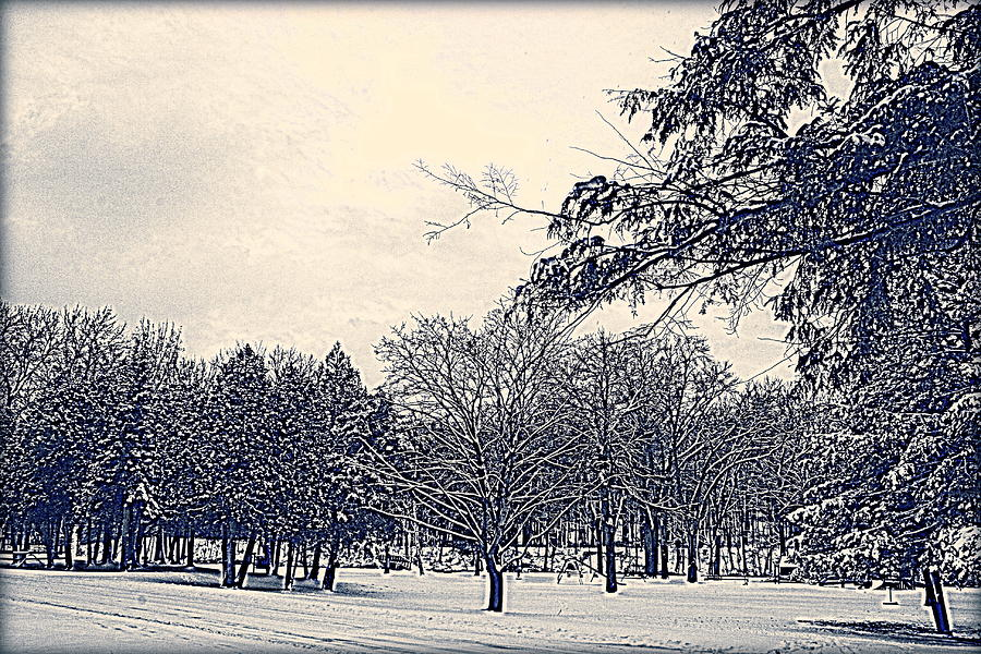 Winter Days Photograph  - Winter Days Fine Art Print