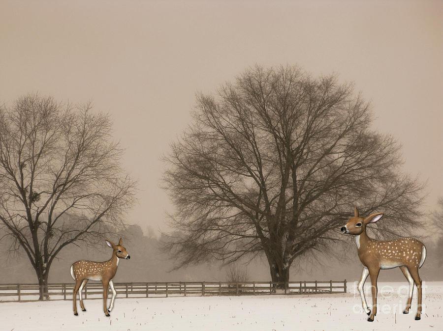 Winter Deer Scene Digital Art