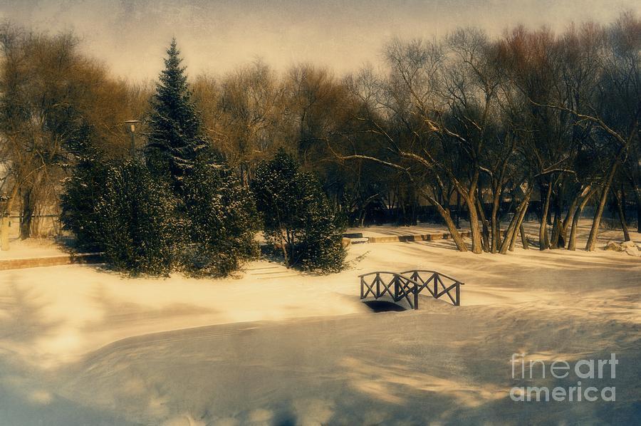 Winter Dream Photograph