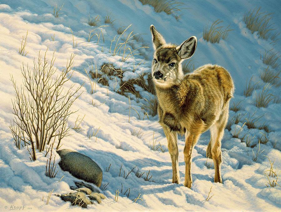 Wildlife Painting - Winter Fawn - Mule Deer by Paul Krapf