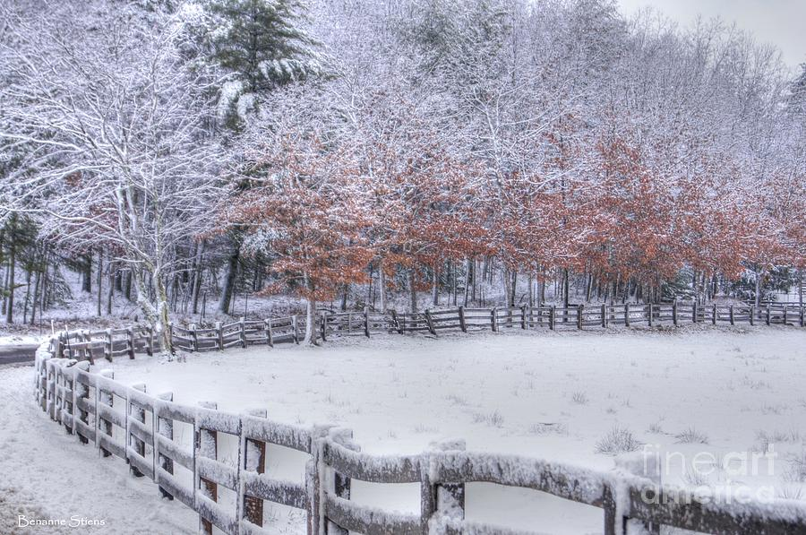 Winter Fenced In Photograph  - Winter Fenced In Fine Art Print