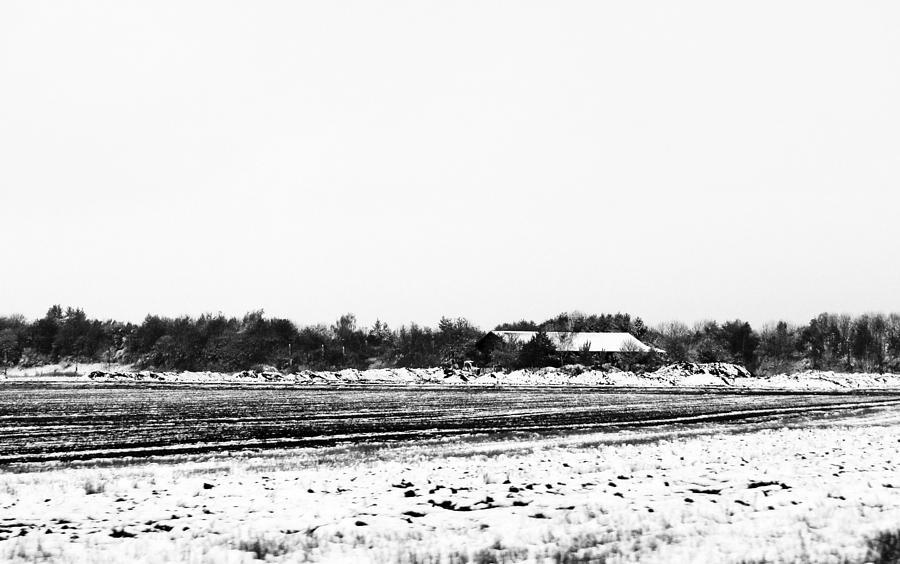 Winter Fields Photograph