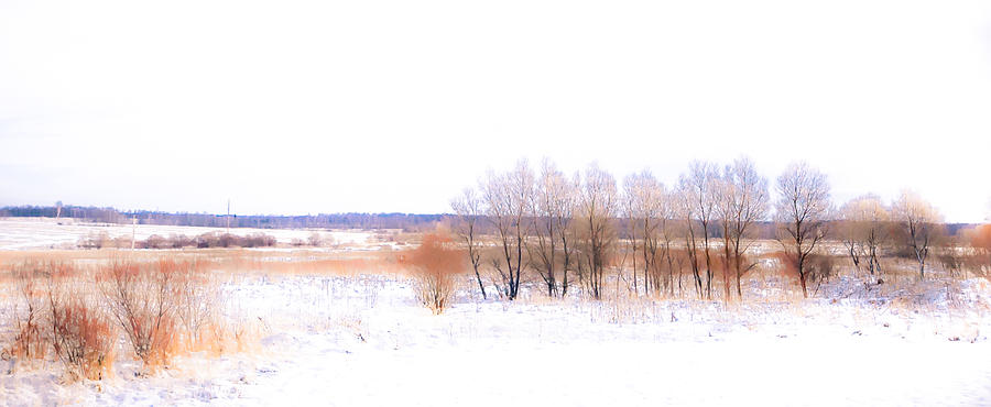 Winter Fields. In Color Photograph