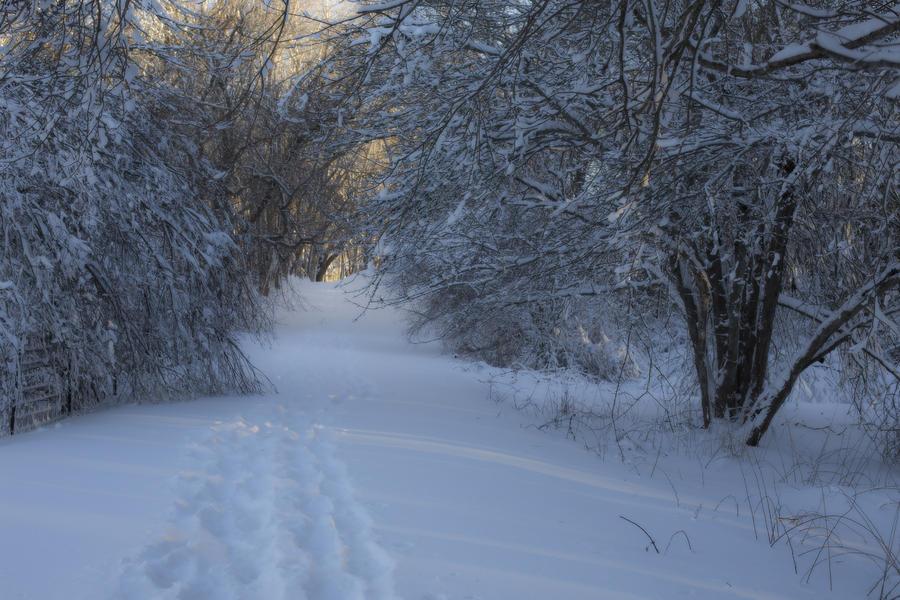 Winter Hike Photograph