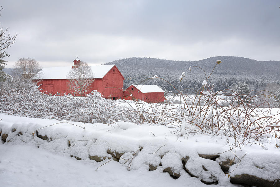 Old Red Barn Photograph - Winter In Connecticut by Bill Wakeley