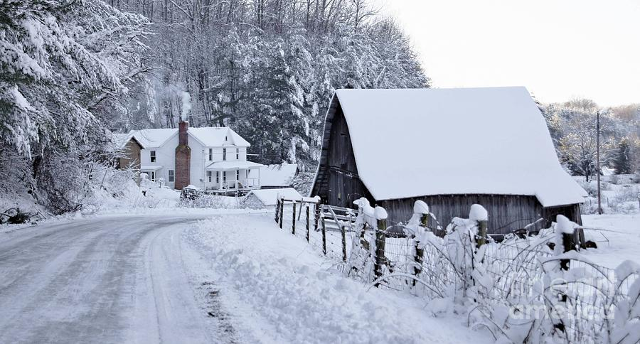 Winter In Virginia Photograph  - Winter In Virginia Fine Art Print