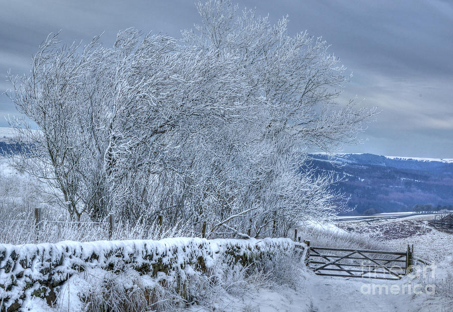 Winter Photograph - Winter Landscape Near Buxton by David Birchall
