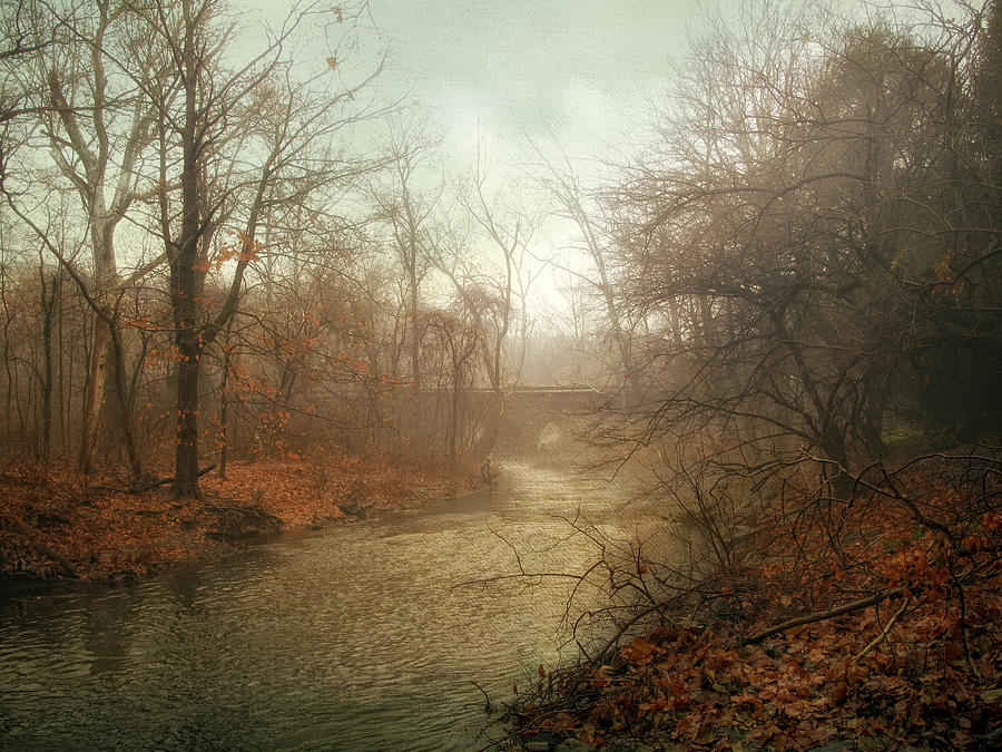 Winter Mist Photograph  - Winter Mist Fine Art Print