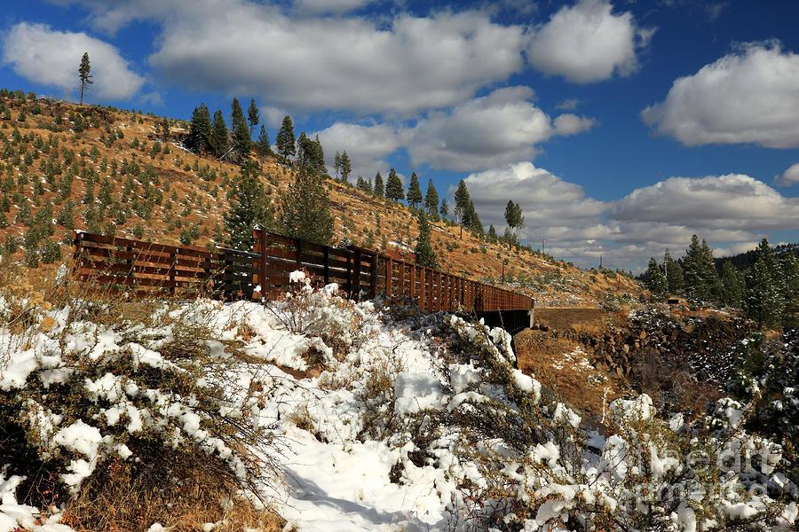 Winter On The Bizz Johnson Trail Photograph