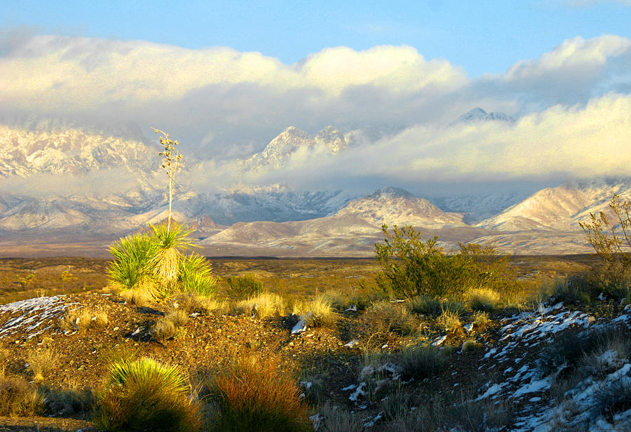 Winter Organ Mountains Photograph