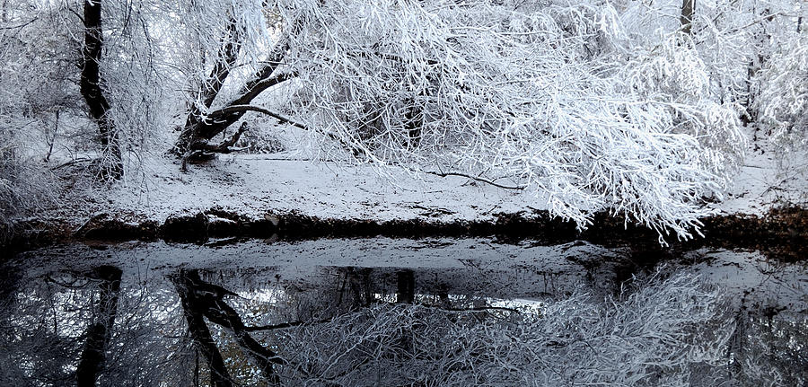 Outdoors Photograph - Winter Reflections by Steven Milner