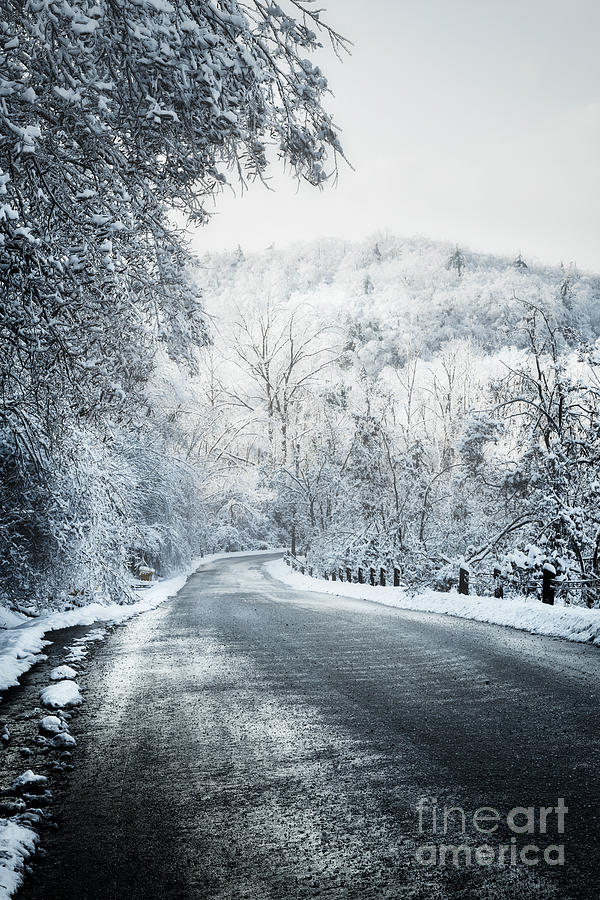 Winter Road In Forest Photograph
