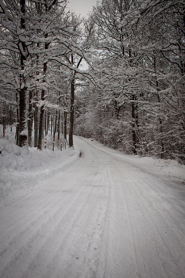 Winter Road Photograph