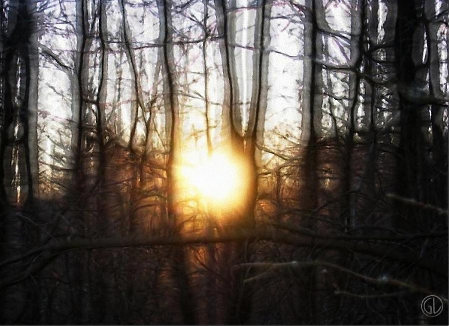 Nature Digital Art - Winter Solstice by Gun Legler