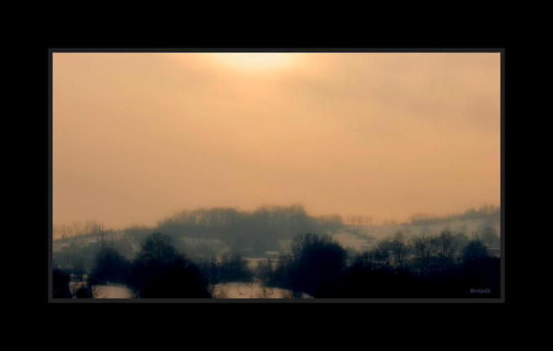 Winter Sun 2 Photograph