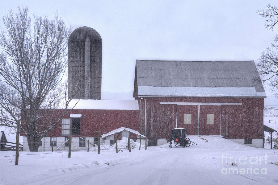 Winter Time Garrett County Maryland Photograph