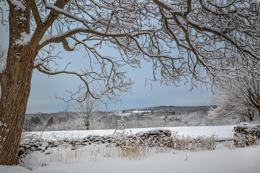 Winter Vista Photograph  - Winter Vista Fine Art Print