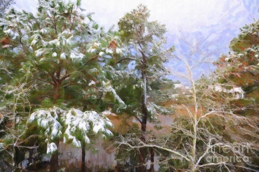 Winter Wonderland Photograph