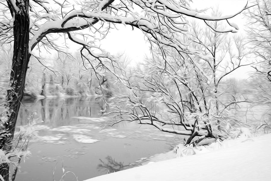 Winter Wonderland In Black And White Photograph by Tracy ...