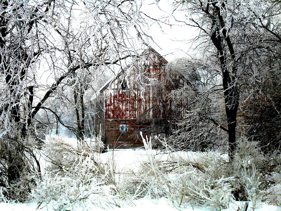 Winter Wonderland Digital Art
