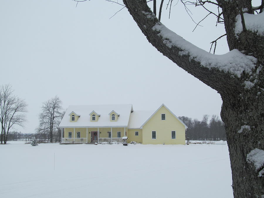 Winter Yellow House Photograph