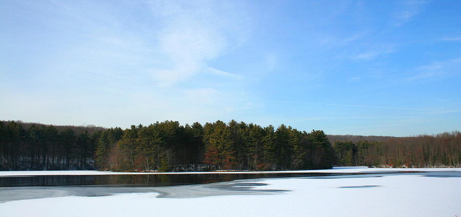 Landscape Photograph - Wintergreen Winterfrost by Stephen Melcher