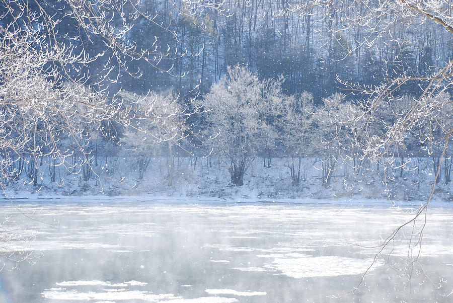 Winters Lace Photograph
