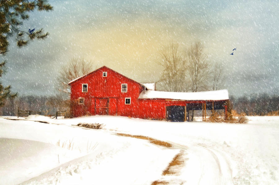 Red Barn. Landscape Photograph - Winters Morning by Mary Timman