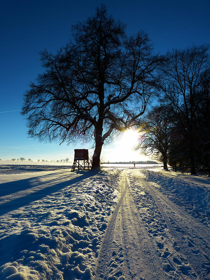 Wintry Countryside Photograph