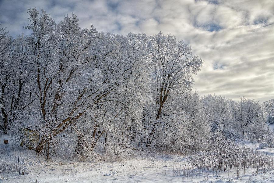 Joan Carroll Photograph - Wisconsin Winter by Joan Carroll
