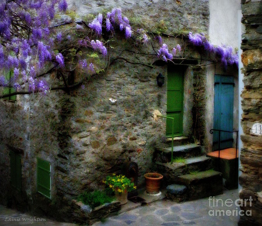 Wisteria On Stone House Photograph