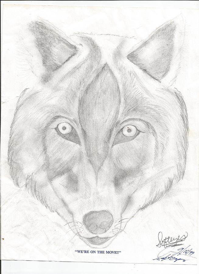 A Drawn Picture Of A Wolfs Face Drawing - Wolf by Annette Abbott