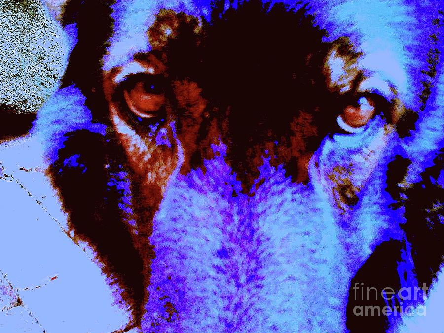 Digital Art Digital Art - Wolf Eyes by Nina Kaye