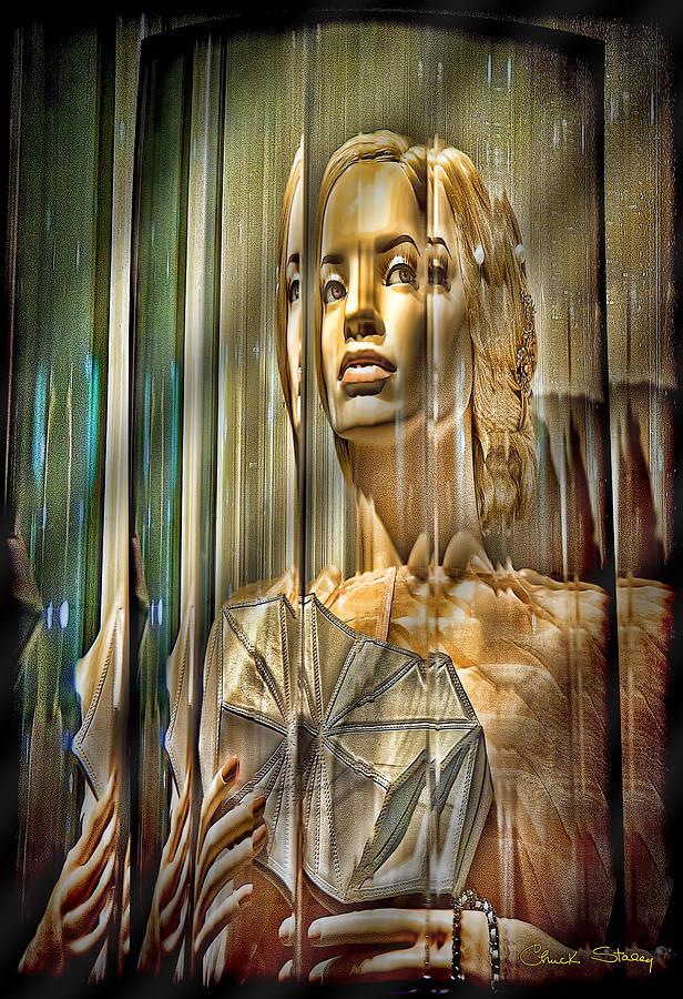 Woman In Glass Mixed Media by Chuck Staley