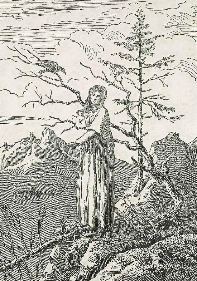 Caspar David Friedrich Painting - Woman With A Raven On The Edge Of A Precipice by Caspar David Friedrich