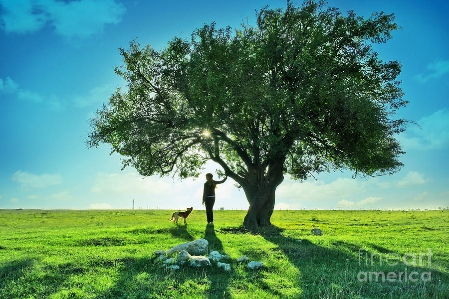 women and dog and Beautiful Greens Photograph  - women and dog and Beautiful Greens Fine Art Print