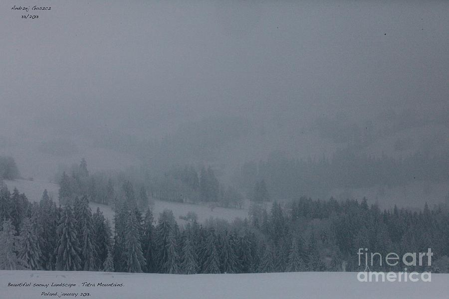 Wonderful Snowy Landscape  . Photograph  - Wonderful Snowy Landscape  . Fine Art Print