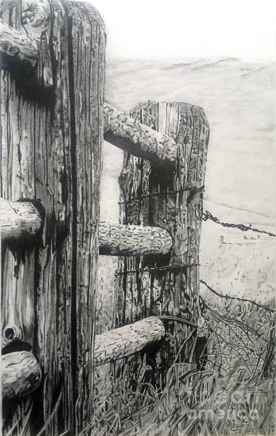 Wood Drawing - Wood And Wire by Jackie Mestrom