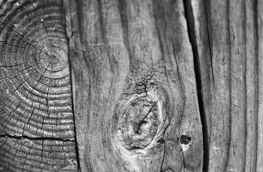 Wood Black And White Photograph - Wood Black And White by Dan Sproul