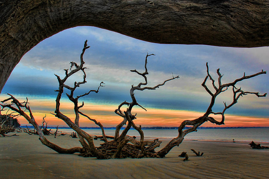 Wood Frame At Roots Beach Photograph