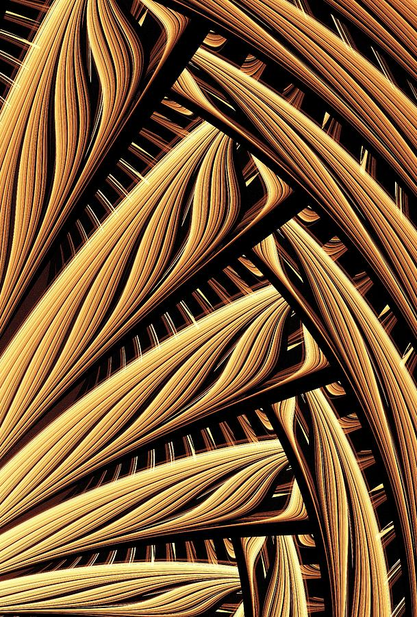 Wood Weaving Digital Art