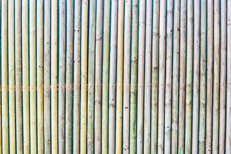 Wooden Poles Photograph
