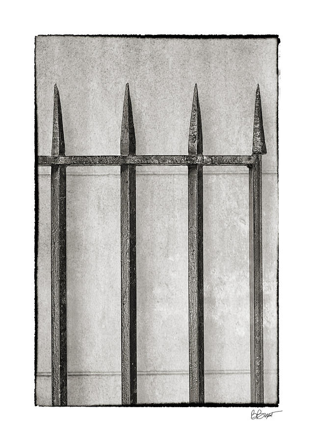 Wrought Iron Gate In Black And White Photograph