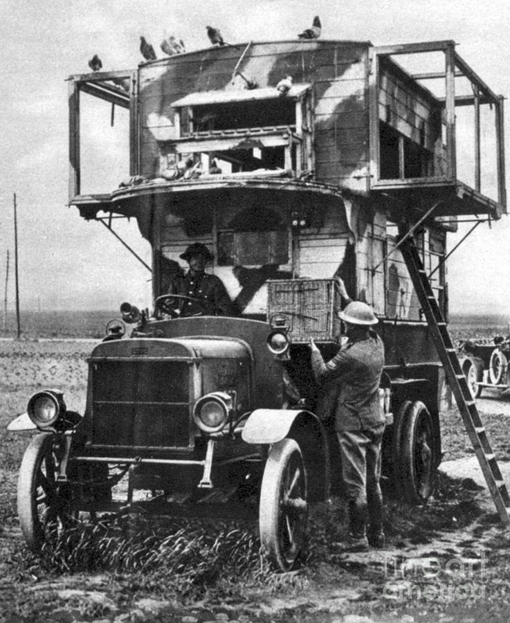 Important Photograph - Wwi British Carrier Pigeon Loft by Photo Researchers